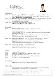 Startup Resume Example by Resume Category Examples Resume For Your Job Application