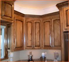 Making Raised Panel Cabinet Doors Arched Raised Panel Cabinet Doors Home Design Ideas