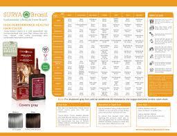 Choosing The Right Hair Color Hair Dye Colors Chart Hair Color Chart Surya Brasil Surya Brasil