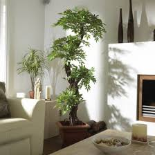 large contemporary artificial plants and trees luxury japanese