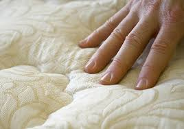 Will Heat Kill Bed Bugs Bed Bug Treatment Terminix Pest Control