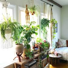 Window Sill Inspiration Indoor Window Plant Shelves Popular Of Window Sill Plants