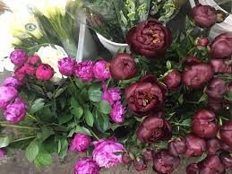 wholesale flowers orlando florida wholesale florist rd home