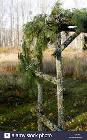 lichen covered trellis decorated for winter holidays stock photo