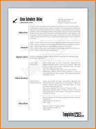 bio data resume examples eliolera com