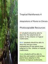 Adaptations Of Tropical Rainforest Plants - tropical rainforests 4 plant adaptations ks3 and ks4 by geotec1