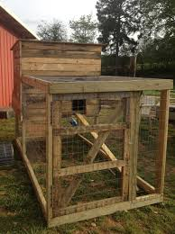 chicken coop made from free pallets gonna make myself one