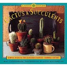 amazon succulents 21 best cactus images on pinterest plants gardening and flowers