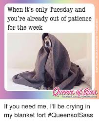 Blanket Fort Meme - when it s only tuesday and you re already out of patience for the