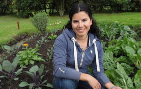my organic vegetable garden some tips for growing your own food