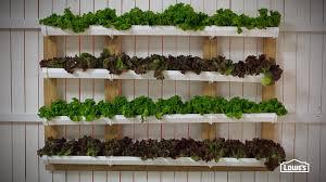 think green vertical garden ideas then gutter garden from lowes