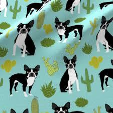 Boston Terrier Flag Boston Terrier Cactus Mint Summer Desert Kids Mint Dogs Puppy Pets