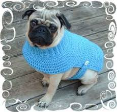 the poet dog sweater is great for a dog who loves the simple