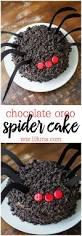 chocolate oreo spider cake recipe spider cake delicious