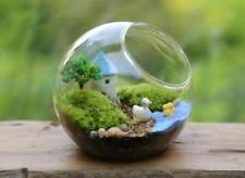 globe terrarium ebay