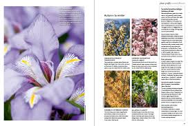 Fragrant Plants List - 26 of the best scented plants gardens illustrated