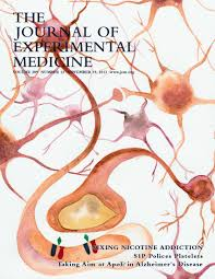 regulation of pten activity by p38δ pkd1 signaling in neutrophils