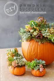 fall decor diy pumpkin tutorials harvest decorations diy