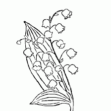 Coloriages de muguet