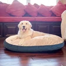 Tempur Pedic Dog Bed Memory Foam Dog Beds Shop The Best Deals For Dec 2017