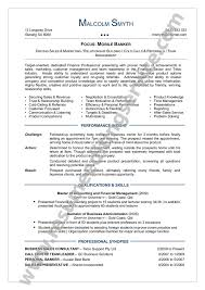 it director resume sample director resume examples sales manager