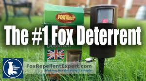 how to use the foxwatch ultrasonic fox deterrent youtube