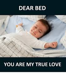 I Love My Bed Meme - dear bed you are my true love dears meme on astrologymemes com