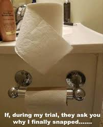 Toilet Paper Roll Meme - funny pictures of the day 37 pics funny pictures pinterest