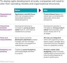 an operating model for company wide agile development mckinsey