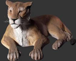 lioness statue lioness lying lioness ani080115h 699 99 size