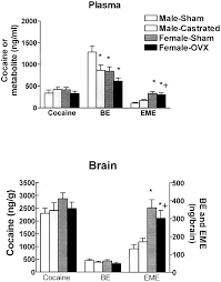effects of and gonadectomy on cocaine metabolism in the rat