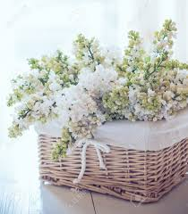 Vintage Chic Home Decor Fresh Spring Bouquet Of White Lilac Flowers In A Wicker Basket