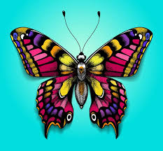beautiful colorful butterfly on blue background bright for