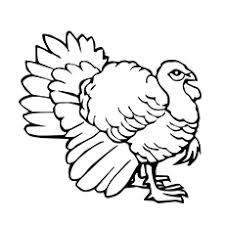 Top Turkeys For Thanksgiving Top 25 Turkey Coloring Pages For Toddlers