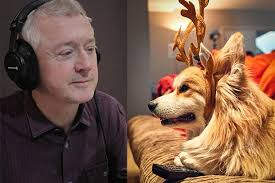 louis walsh narrates christmas film for dogs merry woofmas