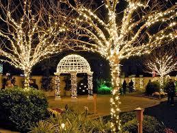 Largo Botanical Garden Botanical Gardens To Host 2017 Gift And Plant Sale Largo Fl Patch