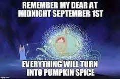 Pumpkin Spice Meme - pumpkin spice fall autumn pinterest