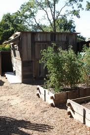 soaker hoses vegetable garden frameless raised beds how to