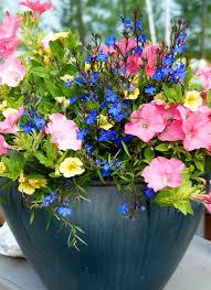 291 best garden containers images on pinterest gardening