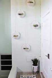 hanging terrarium wall diy u2013 a beautiful mess