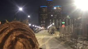 Stone Zoo Lights by Detroit Streetlights Go From Tragedy To Bragging Point