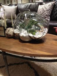 furniture west elm comes to king of prussia mall with terrarium