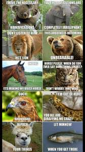 Animal Pun Meme - animal puns what a pun tastic life pinterest animal puns
