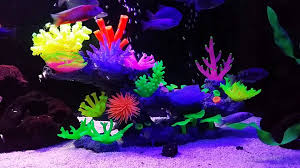 aquaholics glow aquarium fish tank coral ornament