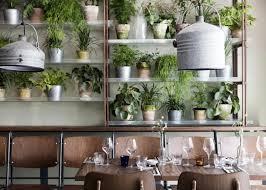 Inside Greenhouse Ideas