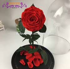 china blue nature roses china blue nature roses manufacturers and