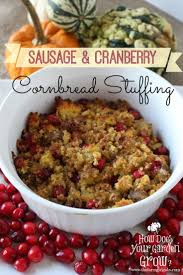 best 25 cranberry ideas on turkey