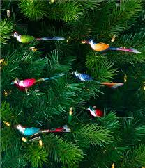 christopher radko shiny brite christmas confetti mini birds 6