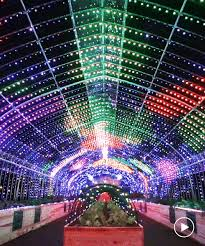 Greenhouse Lights Develops Psychedelic Touch Sensitive Greenhouse Installation In Tokyo