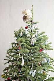 marvelous organic trees best owl tree ideas